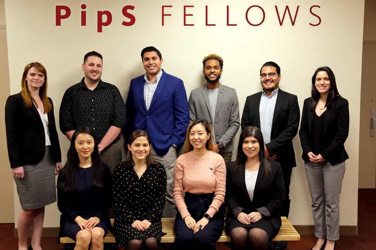 Pips Fellows 2017